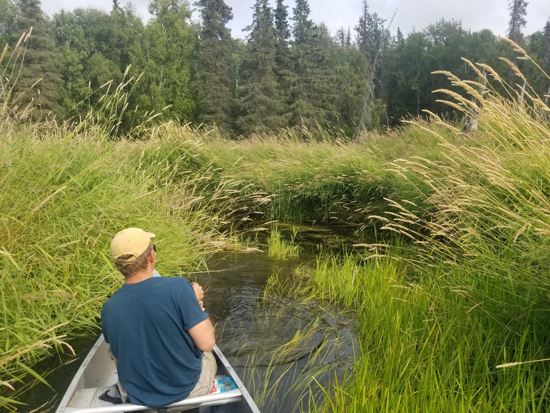 Canoer in Bishops Creek