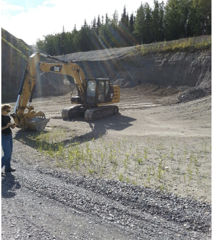 Gravel pit with inspector and invasive plants.
